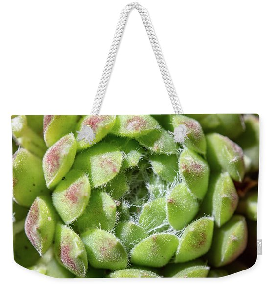 Green Sempervivum Top Down Close Up Weekender Tote Bag