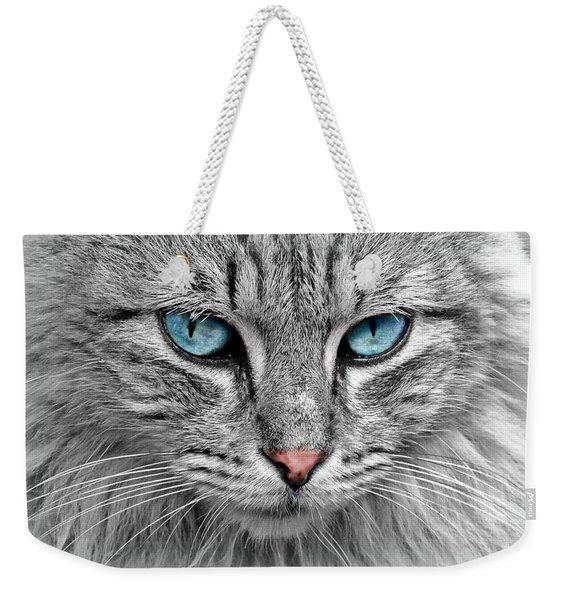 Grey Cat With Blue Eyes Weekender Tote Bag