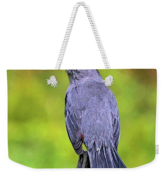 Grey Catbird Weekender Tote Bag