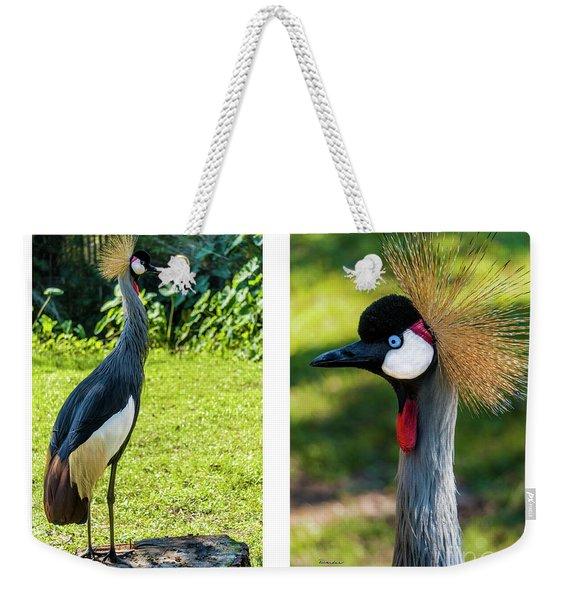 Grey Crowned Crane Gulf Shores Al Collage 10 Diptych Weekender Tote Bag