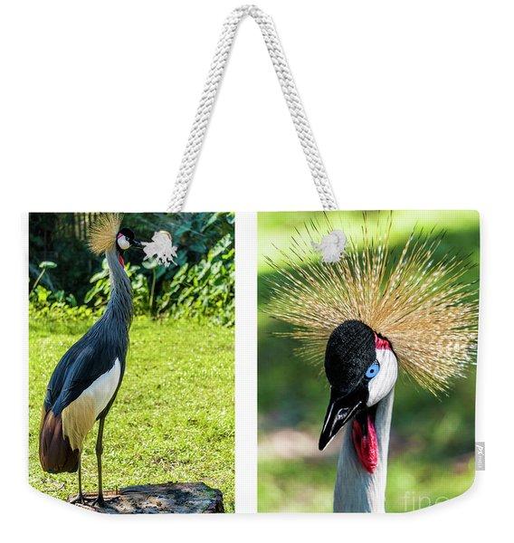 Grey Crowned Crane Gulf Shores Al Collage 8 Diptych Weekender Tote Bag