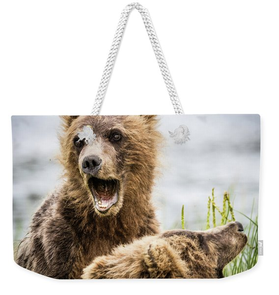 Grizzly Cubs Looking For Their Mum Weekender Tote Bag