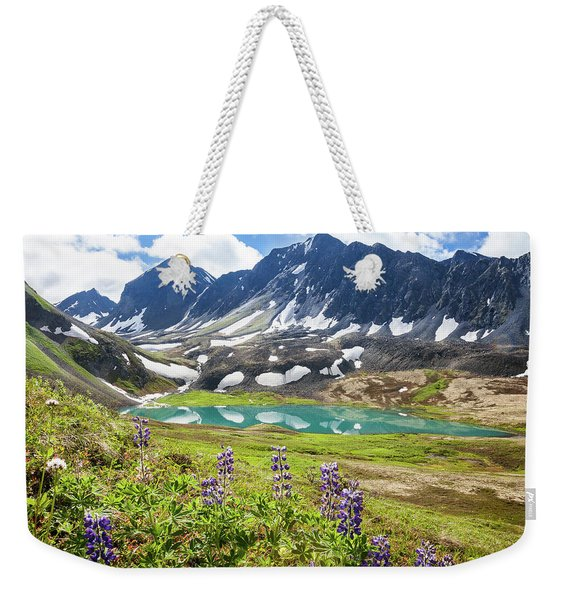 Weekender Tote Bag featuring the photograph Grizzly Bear Lake by Tim Newton