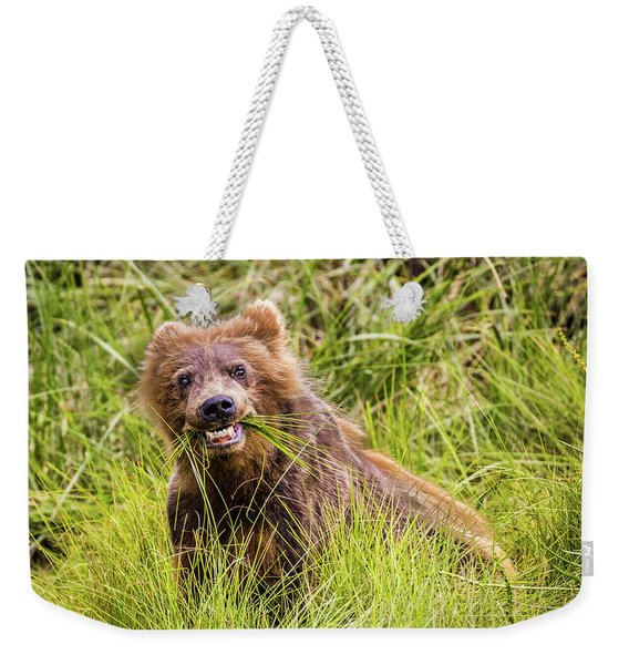Grizzly Cub Grazing, Alaska Weekender Tote Bag