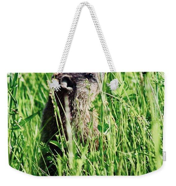 Groundhog V1 Weekender Tote Bag