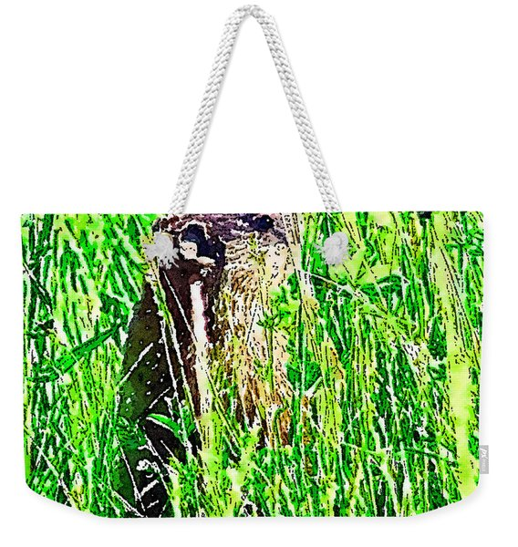 Groundhog V2 Weekender Tote Bag