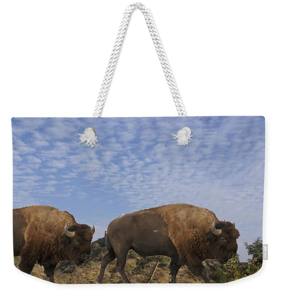 Group Of Bison Walking Against Rocky Mountains  Weekender Tote Bag
