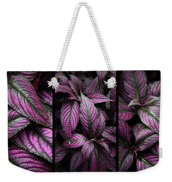 Purple Persian Shield  Weekender Tote Bag