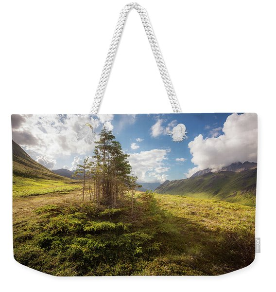 Weekender Tote Bag featuring the photograph Haiku Forest by Tim Newton