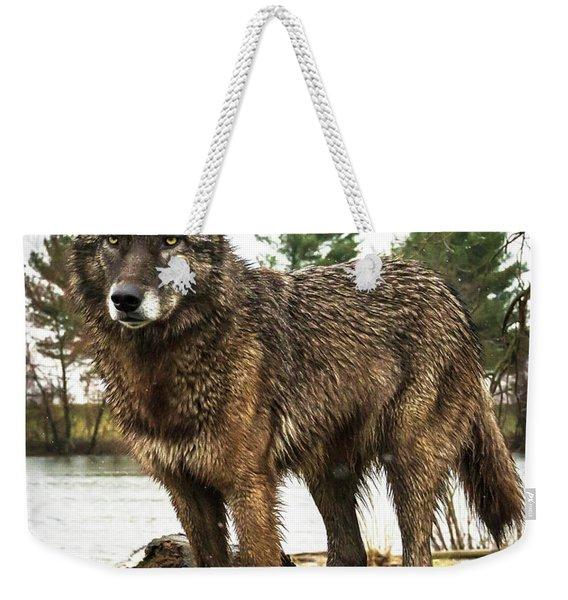 Handsome Niko Weekender Tote Bag