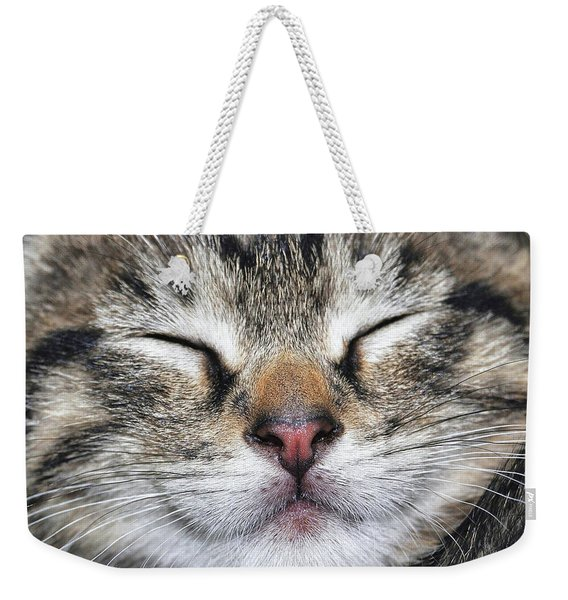 Weekender Tote Bag featuring the photograph Happy Cat by JAMART Photography