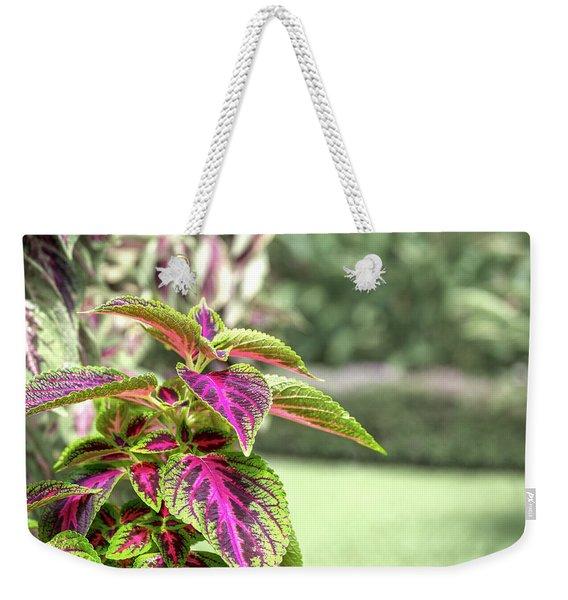 Happy Coleus Costa Rica Plant Weekender Tote Bag