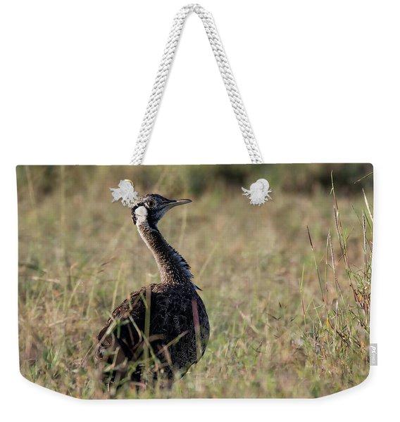 Black-bellied Bustard Weekender Tote Bag