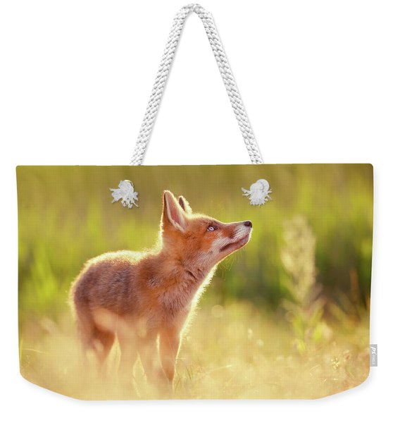 Head Up High - Young And Eager Fox Kit Weekender Tote Bag