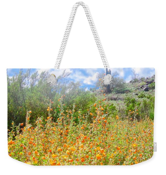 Heavenly Home In Arizona Weekender Tote Bag