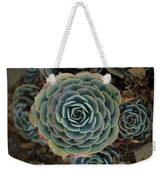 Hen And Chicks Succulent Weekender Tote Bag
