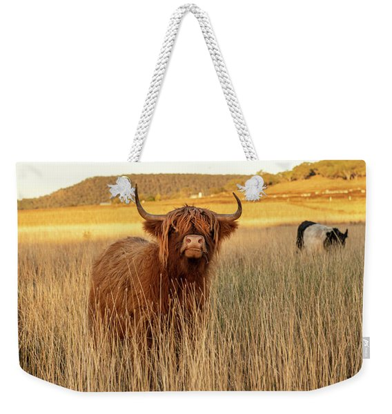 Highland Cows On The Farm Weekender Tote Bag