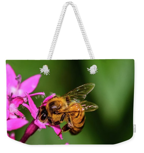 Weekender Tote Bag featuring the photograph Honey Bee by Dheeraj Mutha