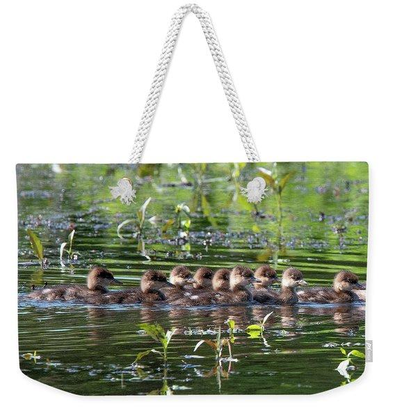 Hooded Merganser Ducklings Dwf0203 Weekender Tote Bag