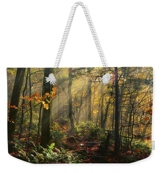 Horizontal Rays Of Sun After A Storm Weekender Tote Bag