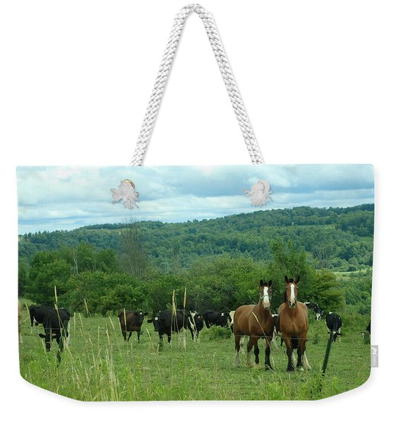 Horse And Cow Weekender Tote Bag