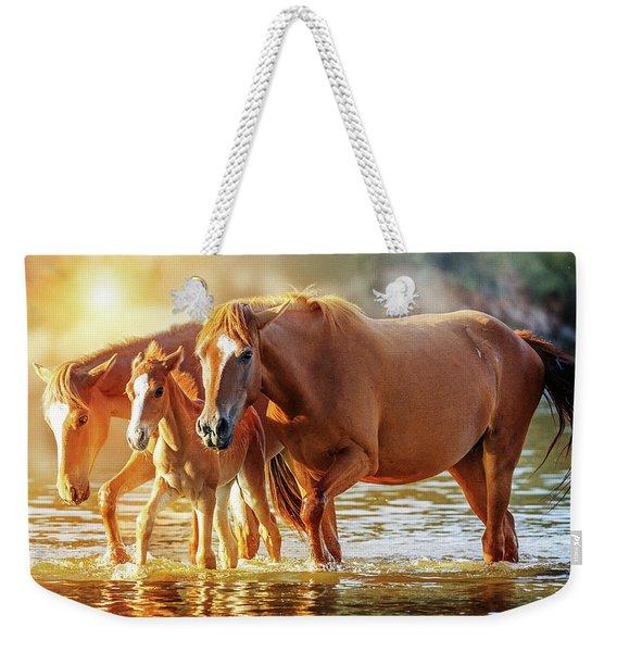 Horse Family Walking In Lake At Sunrise Weekender Tote Bag
