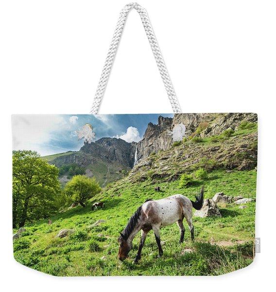 Horse On Balkan Mountain Weekender Tote Bag