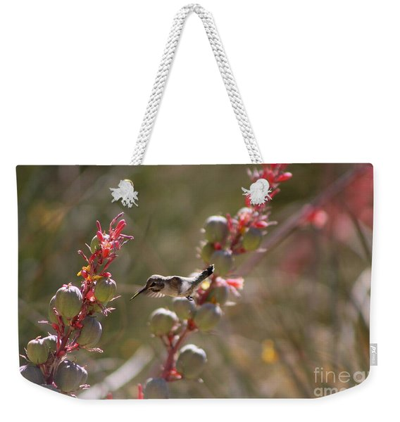 Hummingbird Flying To Red Yucca 1 In 3 Weekender Tote Bag