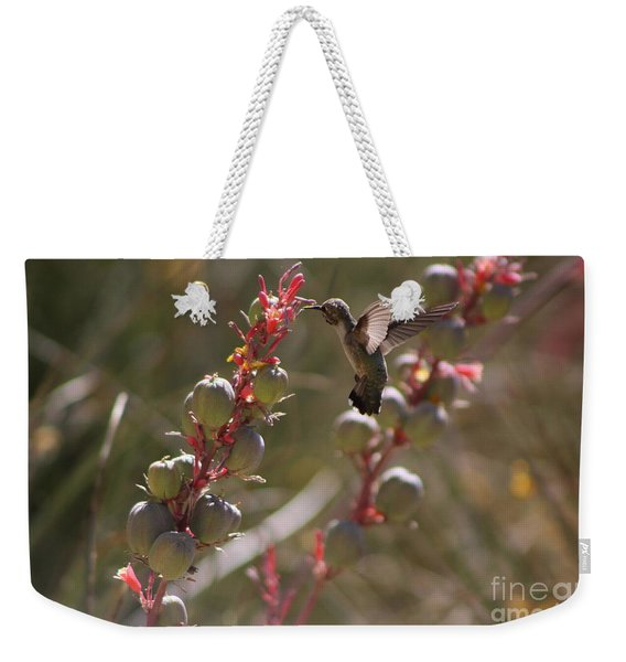 Hummingbird Flying To Red Yucca 3 In 3 Weekender Tote Bag