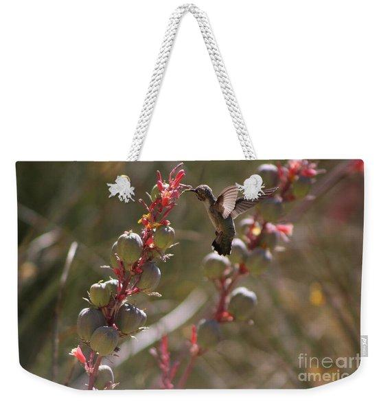 Hummingbird Flying To Red Yucca 3 In 3 Weekender Tote Bag