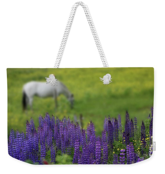 Weekender Tote Bag featuring the photograph I Dreamed A Horse Among Lupine by Wayne King