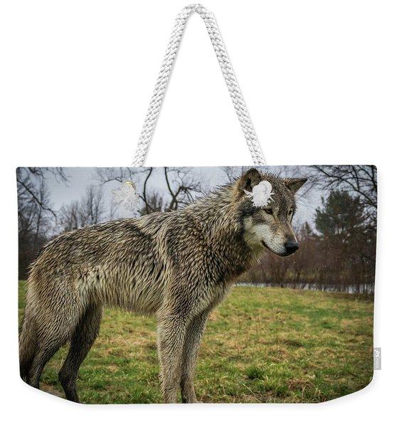 I See It Weekender Tote Bag