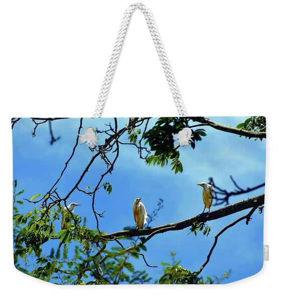 Ibis Perch Weekender Tote Bag