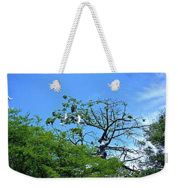 Ibis Risen Weekender Tote Bag