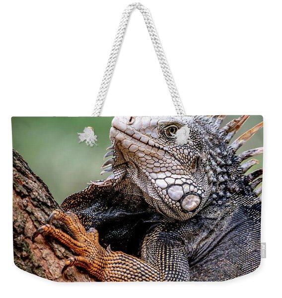 Iguana's Portrait Weekender Tote Bag