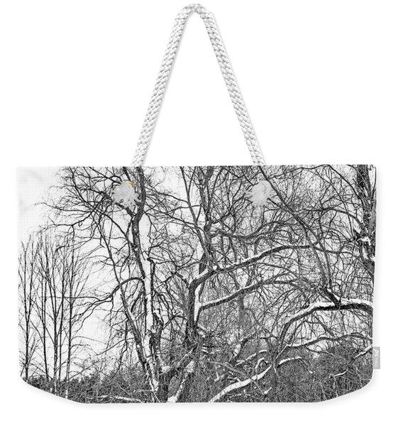 In Praise Of Willows 4 Bw Weekender Tote Bag