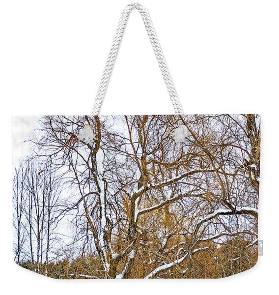 In Praise Of Willows 4 Weekender Tote Bag