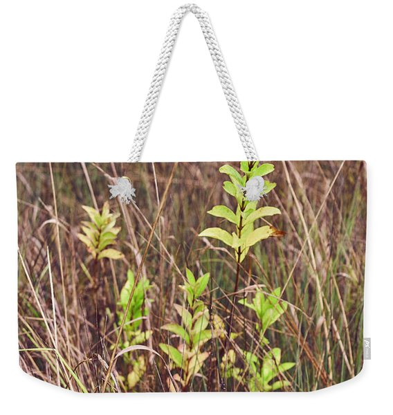 In Tall Grass Weekender Tote Bag