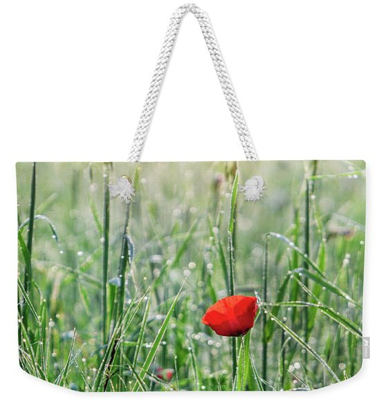 In The Mist Of The Morning Weekender Tote Bag