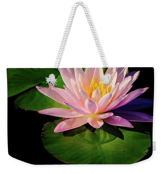 Weekender Tote Bag featuring the photograph In The Spotlight by Jeff Sinon