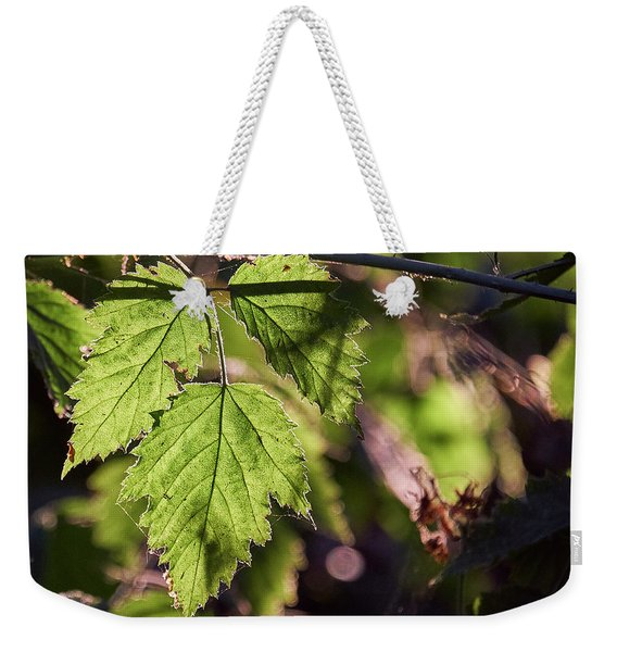 Weekender Tote Bag featuring the photograph In Triplicate by Whitney Goodey