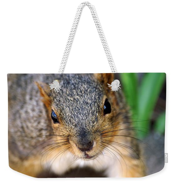 In Your Face Fox Squirrel Weekender Tote Bag