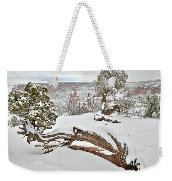 Independence Canyon Of Colorado National Monument Weekender Tote Bag