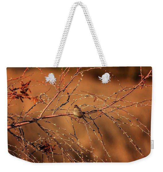 Inhospitable Weekender Tote Bag