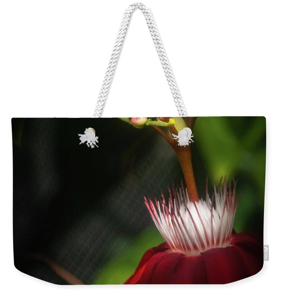 Weekender Tote Bag featuring the photograph Inner Light by Robin Zygelman