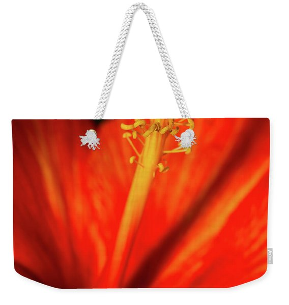 Weekender Tote Bag featuring the photograph Into A Flower by Dheeraj Mutha