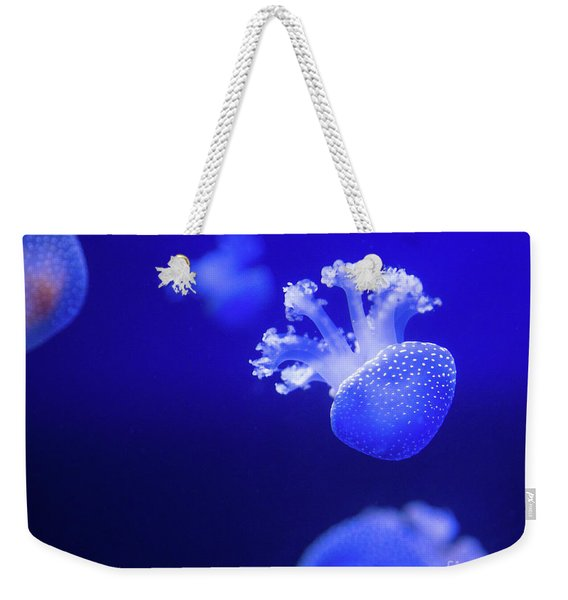 Jelly Fish At The Oceanographic Museum Of Monaco Jacques Cousteau Museum Weekender Tote Bag