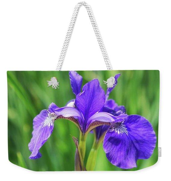 Jewel Tone Weekender Tote Bag