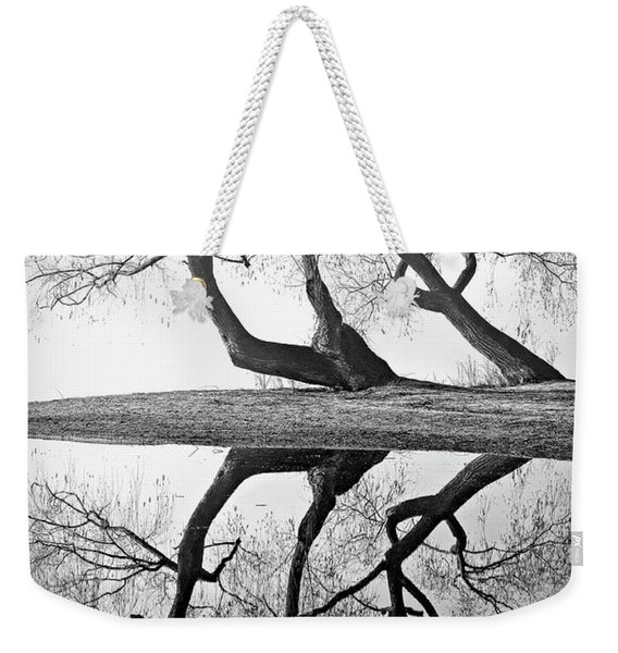 Kaloya Pond And Willow Trees Weekender Tote Bag