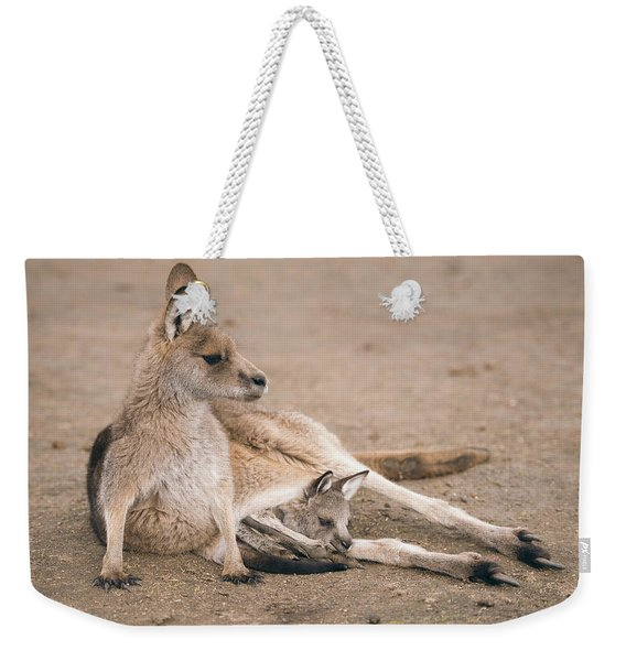 Weekender Tote Bag featuring the photograph Kangaroo Outside by Rob D Imagery